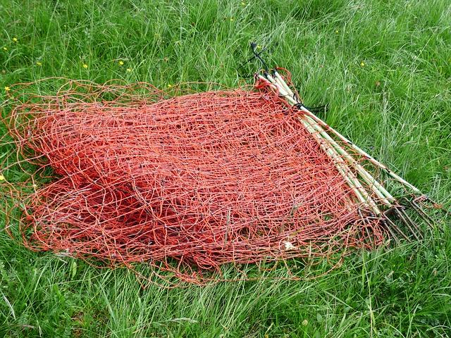 גדר חשמלית לכלבים