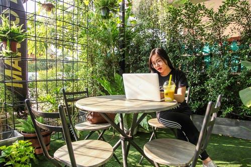 כך תגדרו את הגינה עם גדר במבוק איכותית